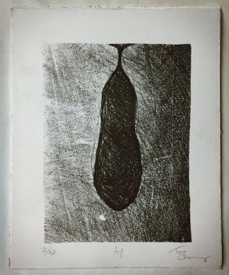 Cocoon_print2